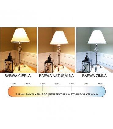 Żarówka LED 12W E27 1055lm