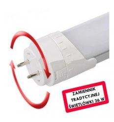 Świetlówka LED T8 120cm zimna 21W obracana